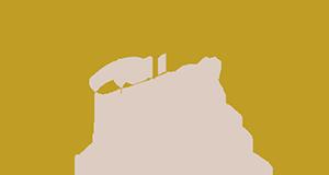 logo_roncoblanchis